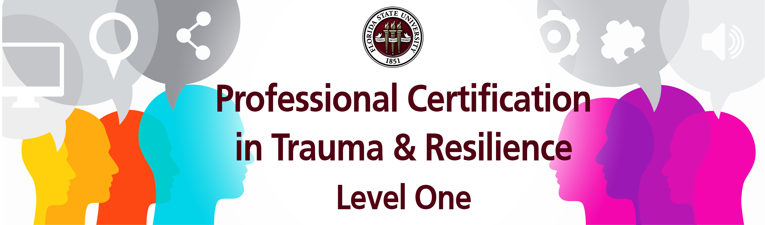 Professional Certification in Trauma and Resilience: Level One | Florida  State University | Learning For Life